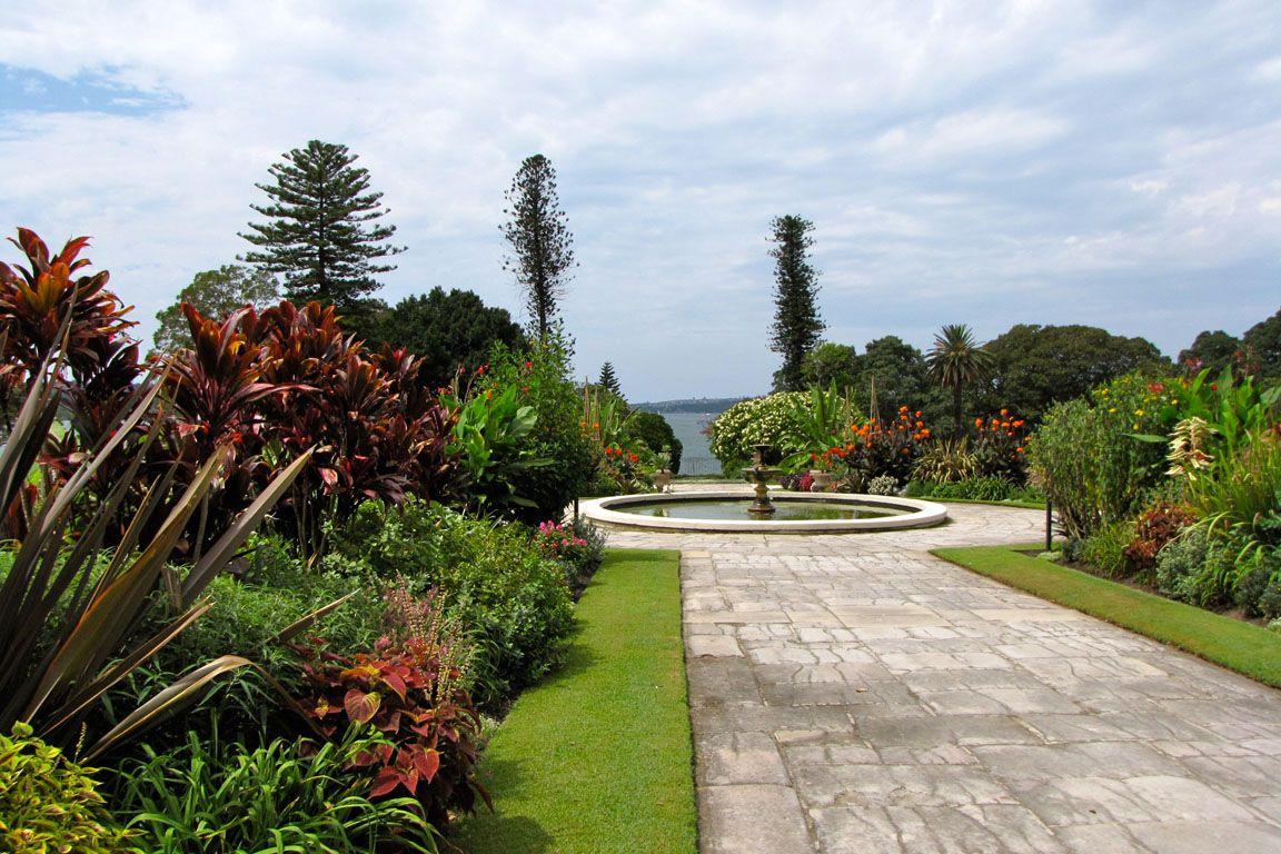 австралийский национальный ботанический сад фото порода